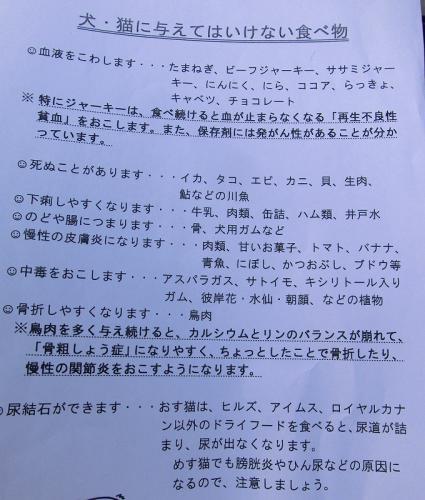 12.05.31 いっちゃん 008