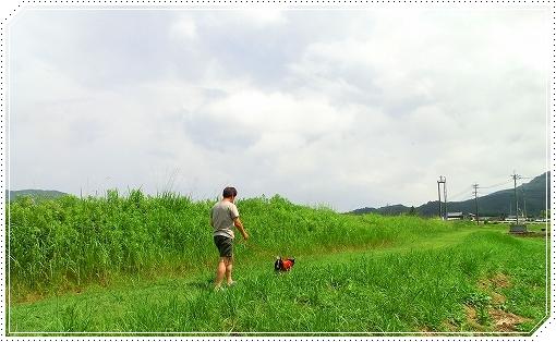 12.08.12 潮見のかっぱ 009