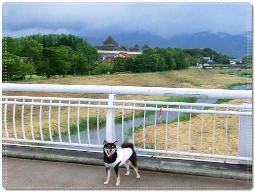 12.08.13 吉野ヶ里歴史公園 007