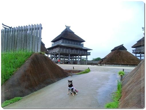 12.08.13 吉野ヶ里歴史公園 016