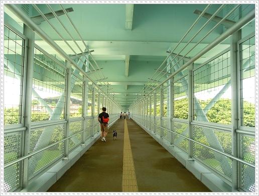 12.08.15 西海橋公園 (3)