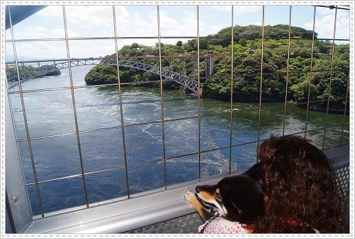 12.08.15 西海橋公園 (4)
