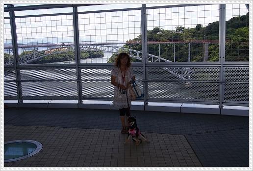 12.08.15 西海橋公園 (6)