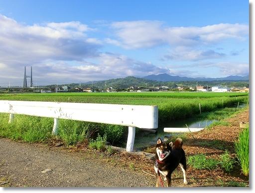 12.08.16 浜散歩 002