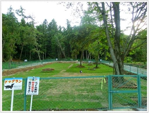 恋文字公園ドッグラン