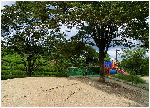 12.08.26 竜王公園 002