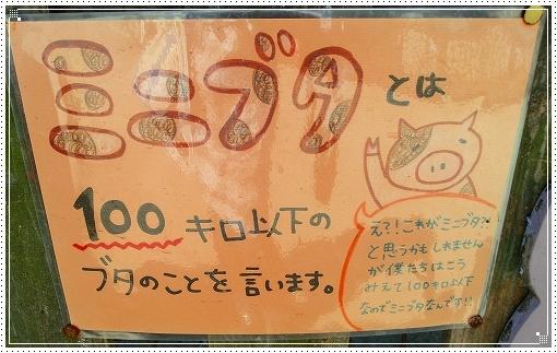 12.10.13 しろとり動物園 037