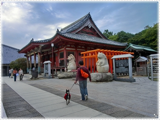 12.10.13 屋島 (2)