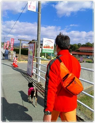 12.11.03 収穫祭 001