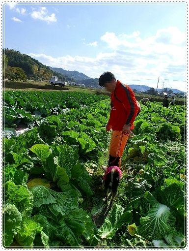12.11.03 収穫祭 015