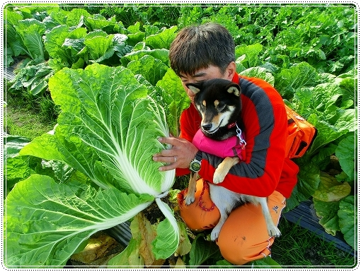 12.11.03 収穫祭 021