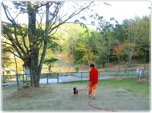 12.11.03 恋文字公園ドッグラン 002