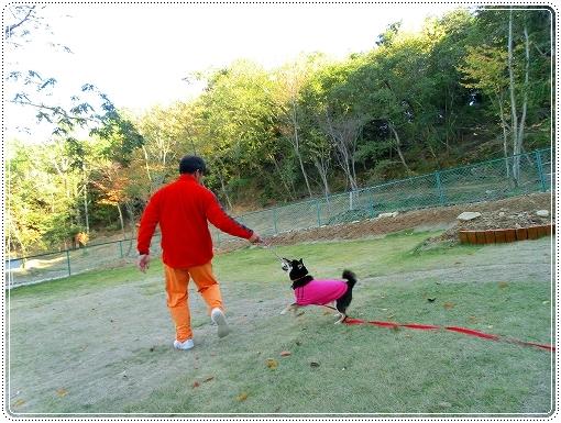 12.11.03 恋文字公園ドッグラン 003