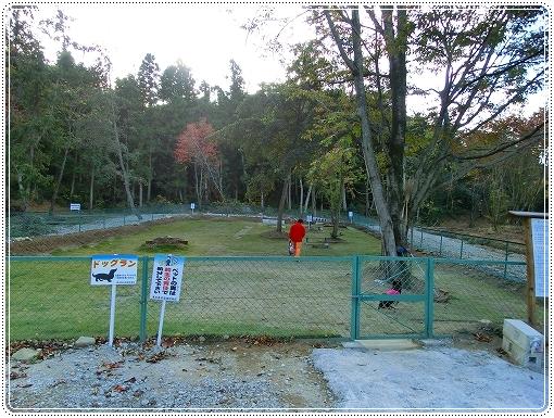 12.11.03 恋文字公園ドッグラン 001