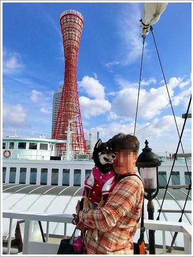 12.11.10 神戸港 (2)