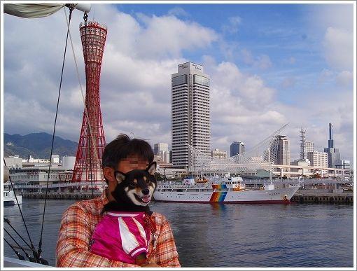 12.11.10 神戸港 (6)