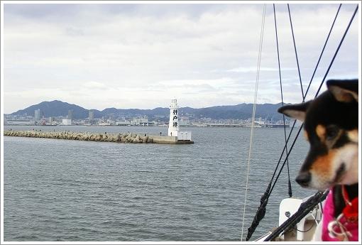 12.11.10 神戸港 (10)