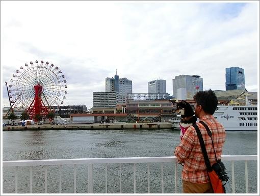 12.11.10 神戸港 (18)