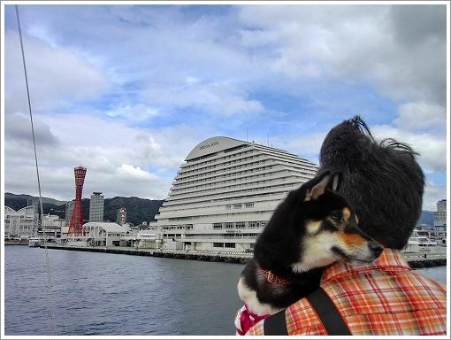 12.11.10 神戸港 (16)