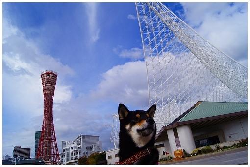 12.11.10 神戸港 (21)