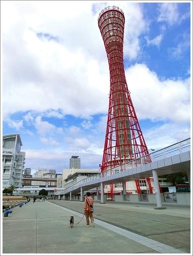 12.11.10 神戸港 (23)