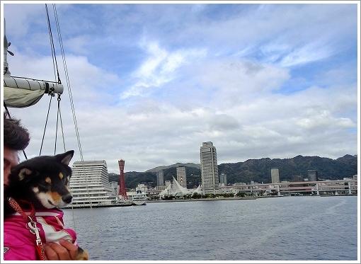 12.11.10 神戸港 021