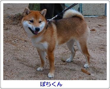 12.12.02 柴ちゃん集合! 024
