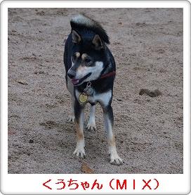 12.12.02 柴ちゃん集合! 099