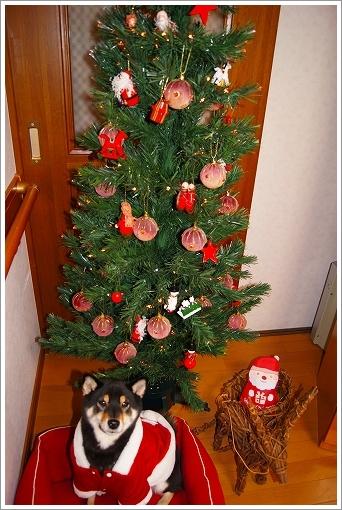 12.12.24 クリスマス 020