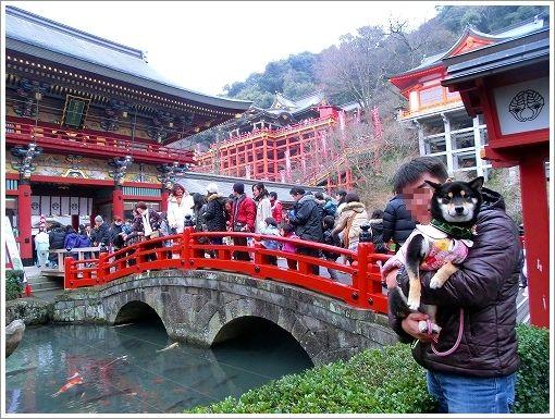 祐徳稲荷神社 (2)