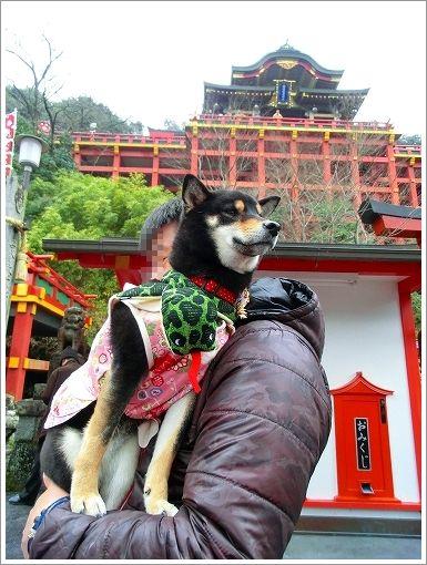 祐徳稲荷神社 (4)