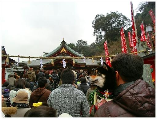 祐徳稲荷神社 (3)