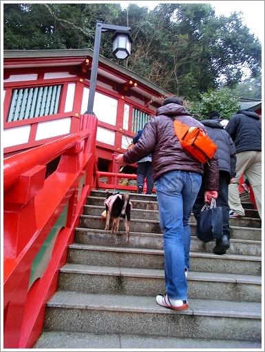 祐徳稲荷神社 (6)