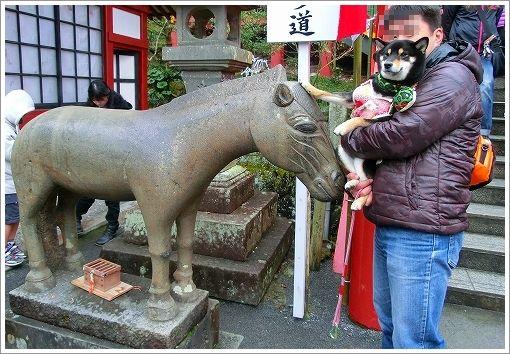 祐徳稲荷神社 (7)