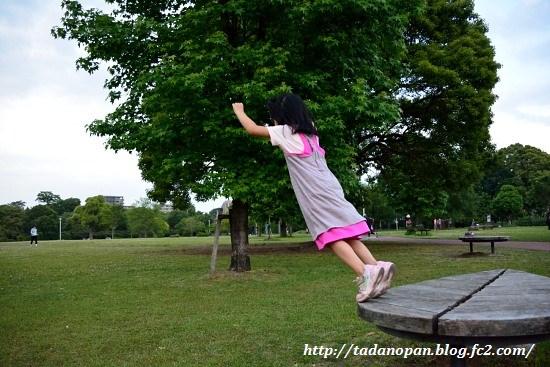Nikon_20130518_293.jpg