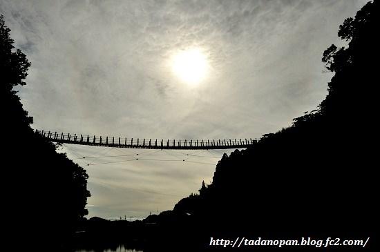 Nikon_20130615_164759.jpg