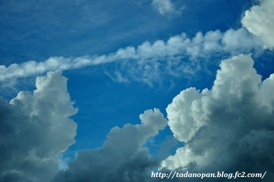 Nikon_20130615_180140.jpg