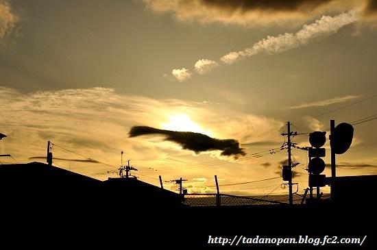 Nikon_20130615_184934_01.jpg