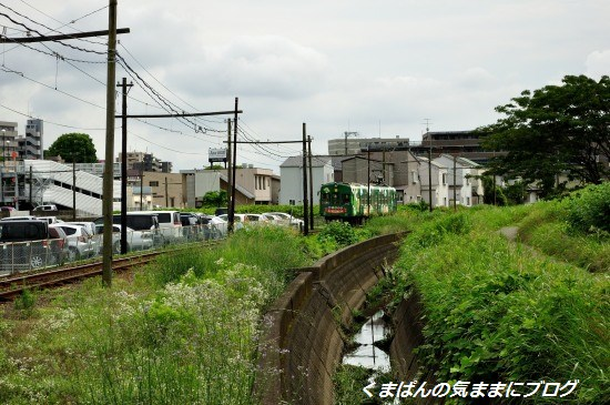 Nikon_20130622_150012.jpg