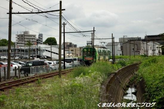 Nikon_20130622_150016.jpg