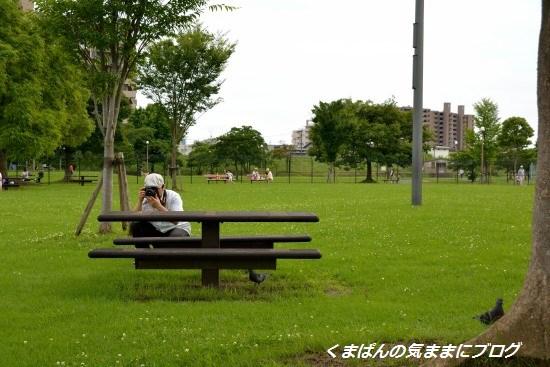 Nikon_20130622_151155.jpg