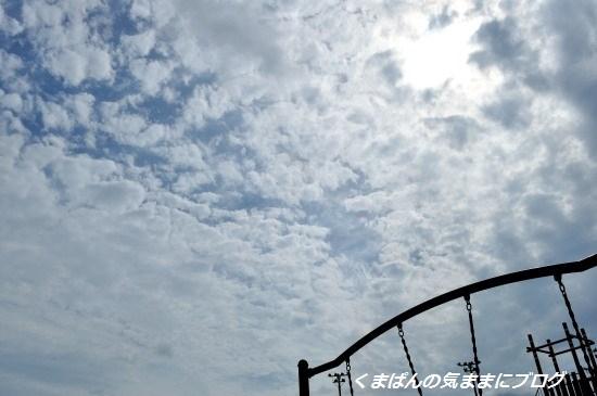 Nikon_20130622_152622.jpg