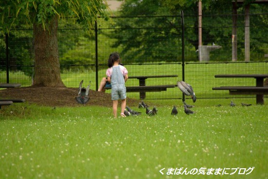 Nikon_20130622_155235.jpg