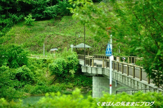 Nikon_20130629_172448.jpg