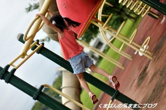 Nikon_20130629_172555.jpg