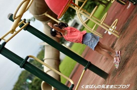 Nikon_20130629_172605_01.jpg
