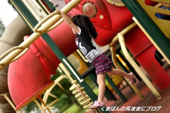 Nikon_20130629_173452.jpg