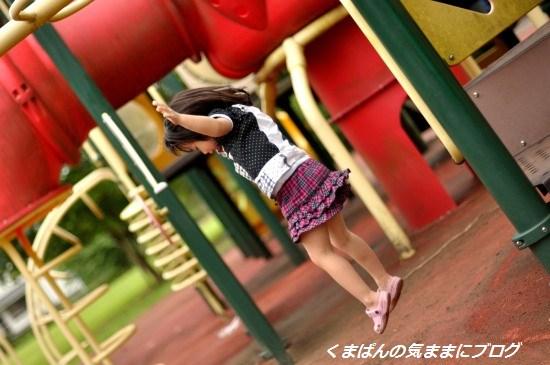 Nikon_20130629_173520.jpg