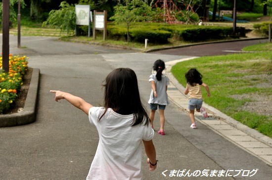 Nikon_20130630_142032.jpg
