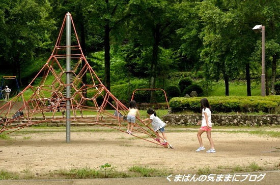 Nikon_20130630_142127.jpg